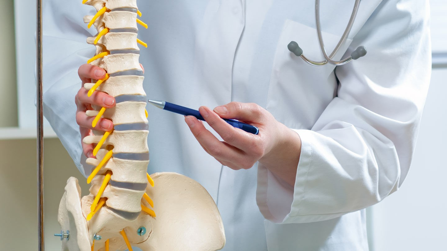 What causes pain in the back